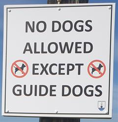 Cosc ar mhadraí ar shuíomh na scoile - No dogs allowed on school grounds.